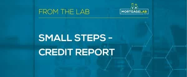 Small Steps – Credit Report